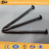 Common iron nails/Iron horseshoe nails