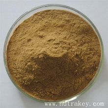 Organic Cordyceps 7 Percent Cordycepic Sinensis Acid Mushroom Extract Powder
