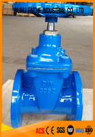 DN100 F4 PN25 Resilient Seated Gate Valve