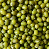 Lowest price new crop Green Mung Bean of different size