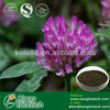 red clover herb extract