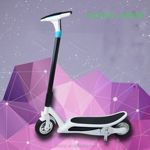 Fashionable designed adult city mini folding electric bike/e-Electric Bicycle