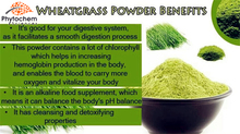 Powder Form and young leaf part fresh Wheatgrass juice