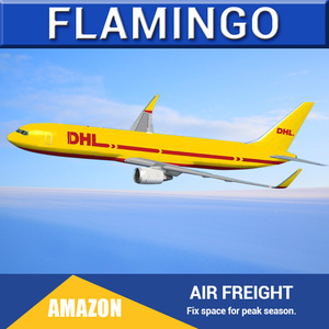 Air freight forwarder china to france cargo from usa amazon shipping