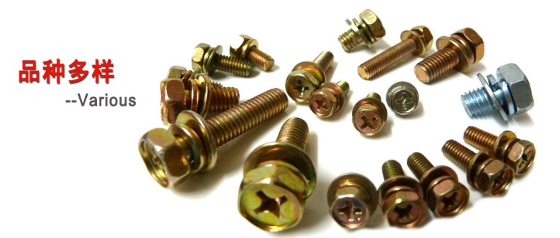 Euro standard brass and Carbon Steel Cross Recessed Round Head screws
