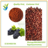 Best Quality Grape Seed Extract Up to 95%, plant extract