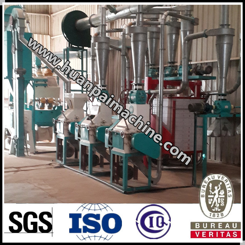 Excellent quality wheat processing plant