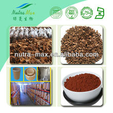 NutraMax Supply-Pinus Massoniana Lamb/Pinus Massoniana Lamb Extract/Pinus Massoniana Lamb 95% OPC
