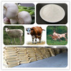 /product-detail/allicin-garlic-25-powder-name-of-chemical-industry-60281089515.html