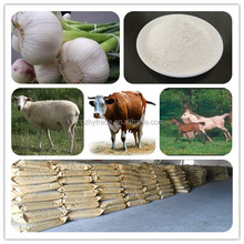 Allicin / garlic 25% powder - name of chemical industry