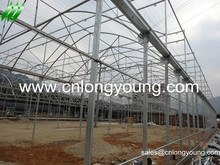 EU Multi-span Film Greenhouses