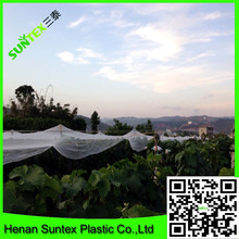 cheap price elastic PE material protection hail netting,hot green vegetables HDPE woven mesh grape plantation white hail nets