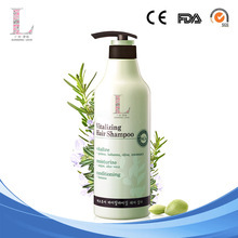 Private label professional Moisturizing organic hair Shampoo OME/ODM guangzhou Direct manufacturers