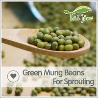 Foul Medames For Europe Green Mung Beans