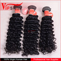 Wholesale New coming full cuticle 100% virgin indian no chemical processed deep curly virgin hair