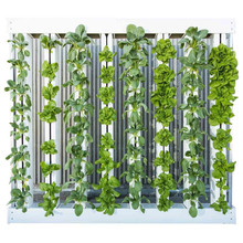 PVC Complete Vertical Hydroponics Systems