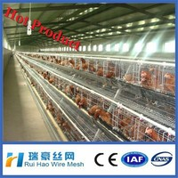 wholesale factory supply chicken coop for laying hens