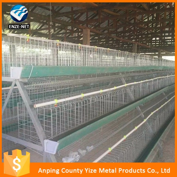 Hot selling wooden chicken layer cage