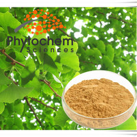 Natural Ginkgo Biloba Extract Powder 24% Total Flavone Glycosides