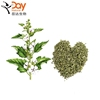 /product-detail/althaea-officinalis-l-dried-marshmallow-leaf-plant-cutting-bulk-in-stock-60768040009.html