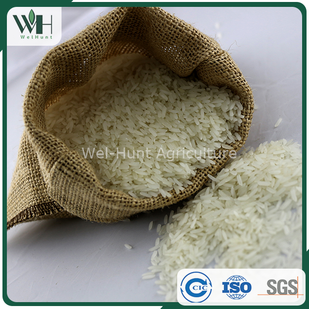 Best price per ton of jasmine rice from top 10 exporters