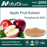 HACCP Certification Apple peel powder polyphenols 80%