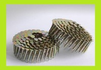 hot sale Coil Roofing Nails distributor