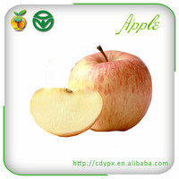 Chinese Exporter Fresh Red Fuji Apple Fruits Natural Growth Containing Vitamin D