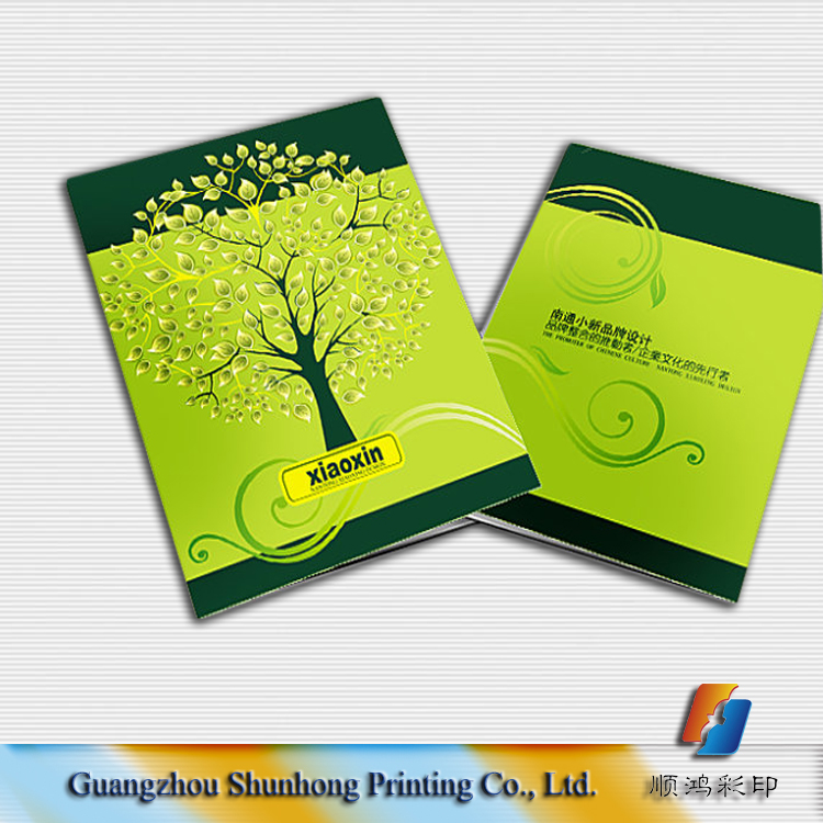 Cheap custom leaflet/catalogue/label/booklet/flyer/brochure printing services