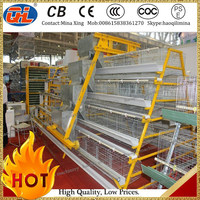 uganda poultry farm automatic chicken layer cage