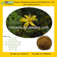 GMP Certified Manufacturer Supply St.john's Wort Extract