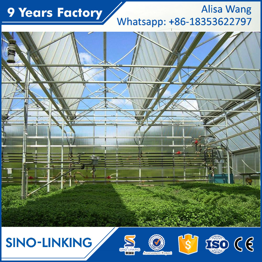 SINOLINK low operating cost poly tunnel winter Polycarbonate greenhouse