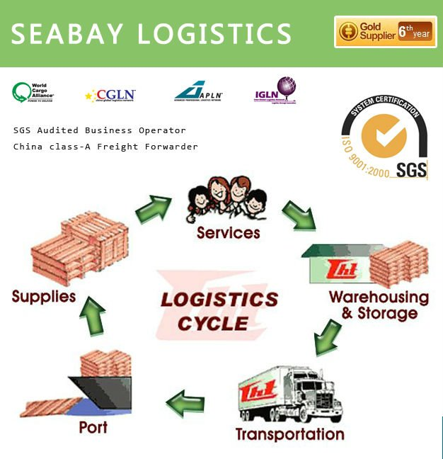 Competitive international clearing and forwarding company