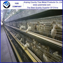 Anping YIZE A Type Multi-Tier Pullet Chicken Cage for Layers (manufacturer)
