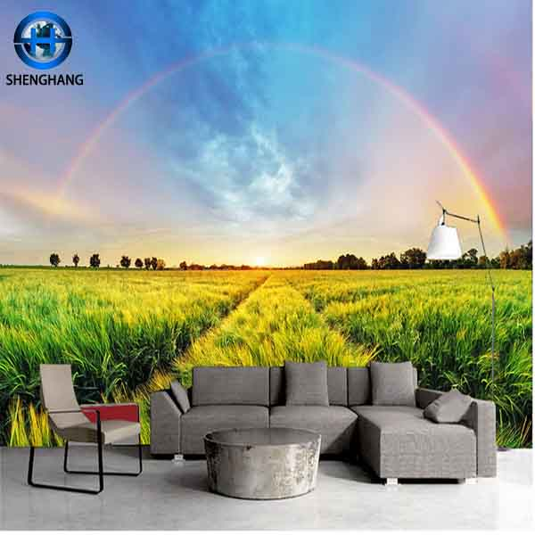 2017factory price ovenproof 3d 5d home decor pvc wall sticker
