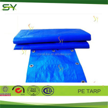 60gsm Waterproof PE Tarpaulin of blue, tarpaulin of dora, tarpaulin plastic sheet with all specifications