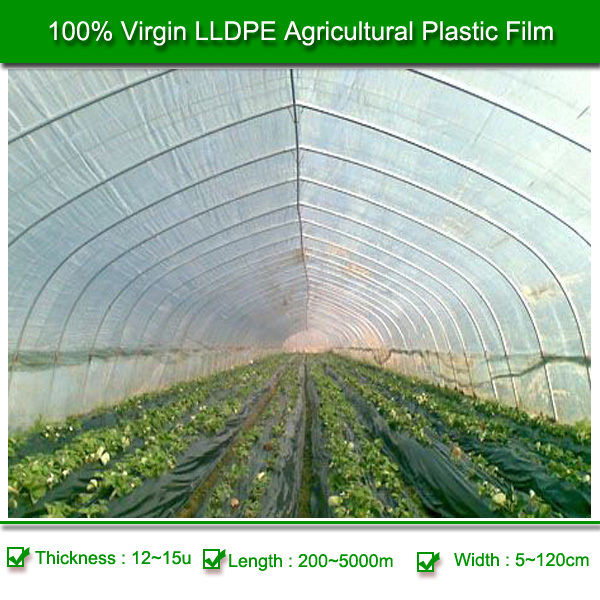 High Quality Low Price Black Agricultural LDPE Plastic Mulch Film
