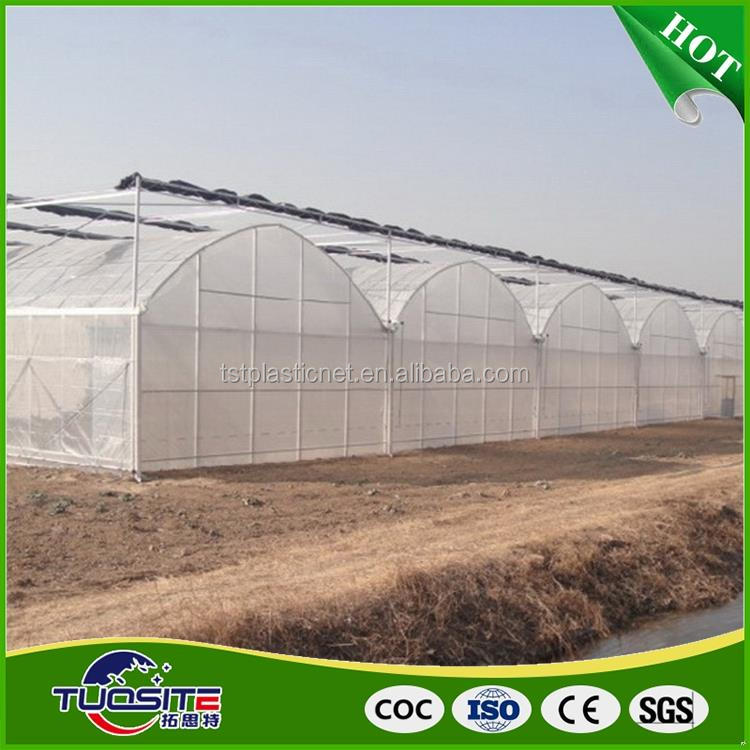 Natural style fashionable best film covered mushroom greenhouse
