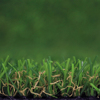 Chinese Manufacturer Artificial Grass Turf Carpet