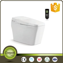 Ceeport SAMAF CP-05 2016 New bathroom one piece smart wc intelligent bidet toilet