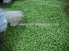 export fruits and vegetables stand of frozen green peas