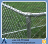 High quality powder coating cheap dog kennels