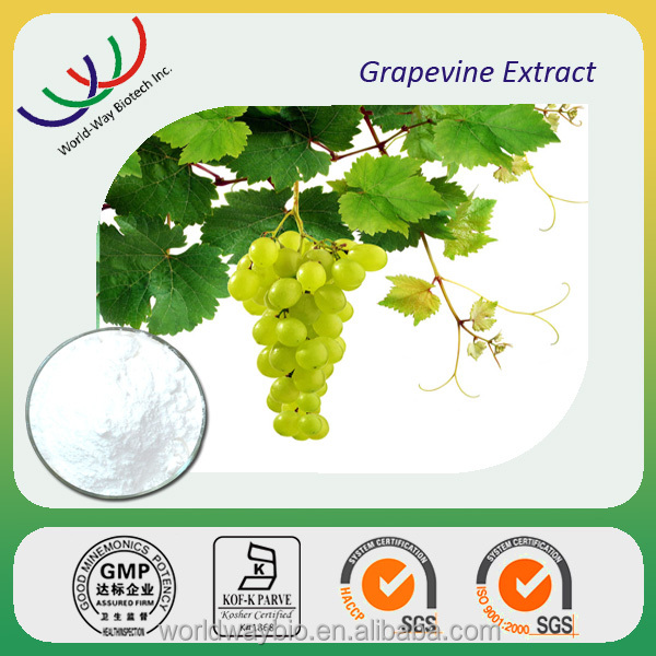 High quality antioxidant and anti-inflammatory herbal extract 5% resveratrol grapevine extract