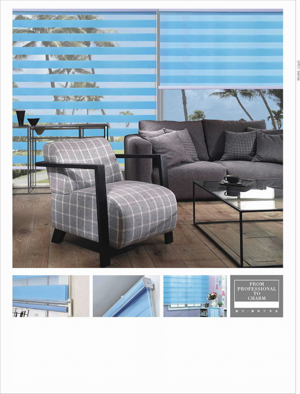 2015 new design Double layer roller blind shade &Zebra roller blind curtain