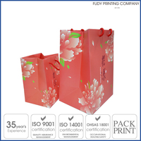 Widely Use Custom Design Colorful Paper Gift Bag