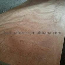 Rotary cut type Sapele face commercial plywood