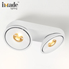 Hot Selling Architectural Light Double Cob
