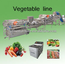 stainless steel vegetable washing machine/salad processing equipment/plant