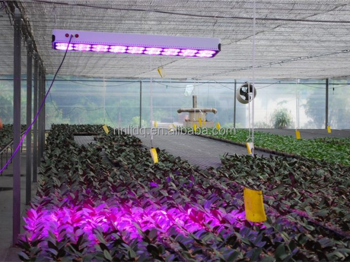 High Lumen Led Grow Light 400 W Apollo 8 Red/Blue orFull Spectrum for Agricultural Greenhouses, Hydroponic Systems