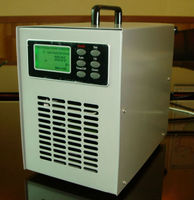 ozone machine cold corona discharge ozone generator from large horse